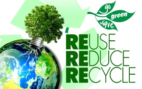 Reduce Reuse Recycle Redundant